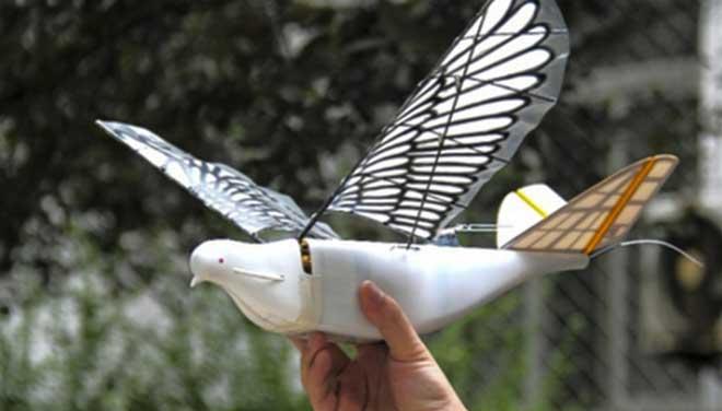 चीनले बनायो 'रोबोटिक बर्ड', आकाशबाटै हरेक गतिबिधिमा निगरानी गर्ने