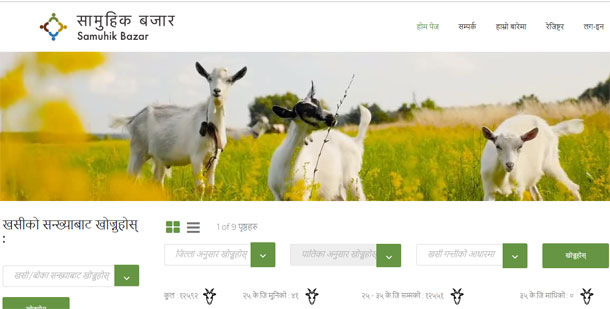 किसानको उत्पादनमा उचित लाभ दिने उद्देश्यसहित 'सामुहिक बजार' अनलाइन संचालनमा