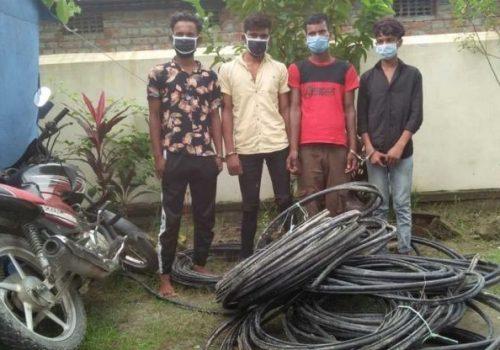 नेपाल टेलिकमको तार चोरी गर्ने ४ जना पक्राउ