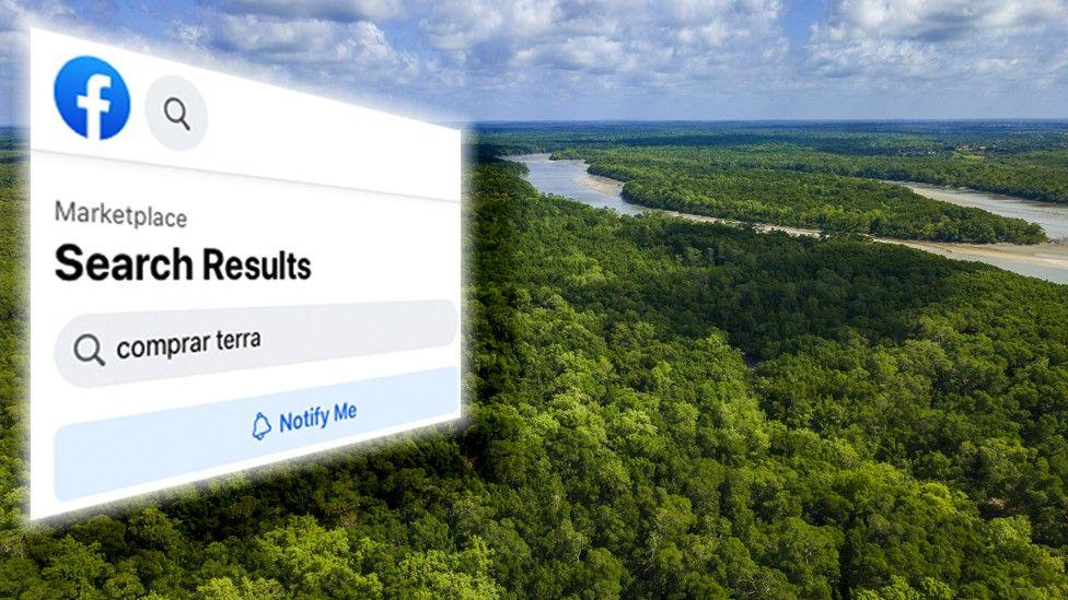 फेसबुकमा राखिएको ब्राजिलको अमेजन जंगल बिक्री विज्ञापनको अनुसन्धान गर्न अदालती आदेश