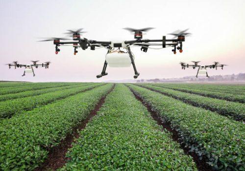 मनमोहन प्राविधिक विश्वविद्यालयले ल्यायो ड्रोन क्यामरा, औद्योगिक र कृषि क्षेत्रमा उपयोग गरिने