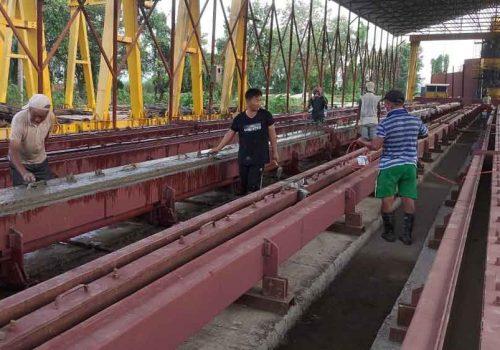विद्युत प्राधिकरणले मोरङबाट विद्युतका कंक्रिट पोल उत्पादन सुरु